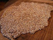 Sesame Snaps (Dehydrating Honey) found on PunkDomestics.com